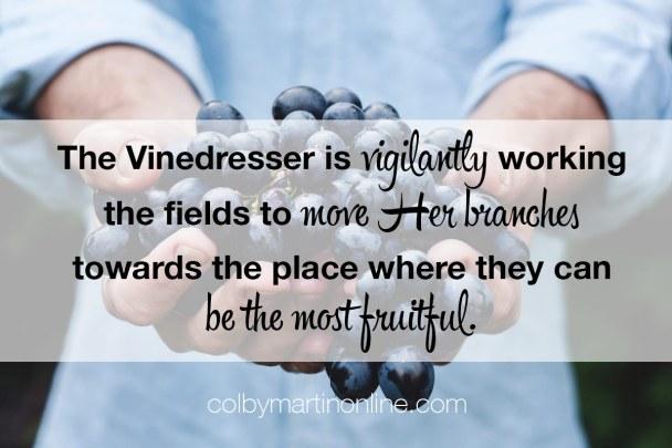 the-vindresser-moves-her-branches